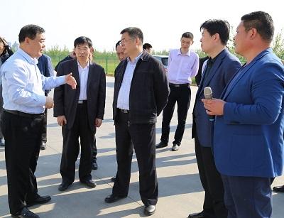 国家粮食局领导到香驰调研粮食产业发展工作